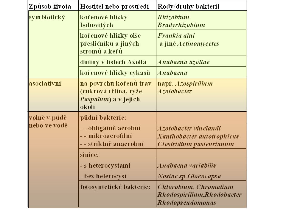 Heterotrofní výživa Ukládání zásobních látek-pupeny, semena, hlízy (triacylglyceroly- tuky,  -glukany-sacharidy, zásobní bílkoviny Klíčení (mobilizace zás.látek-dělohy, endosperm) Prorůstání pupenů Parazité, poloparazité Masožravé rostliny Symbiózy(lišejníky) Příjem živin listy