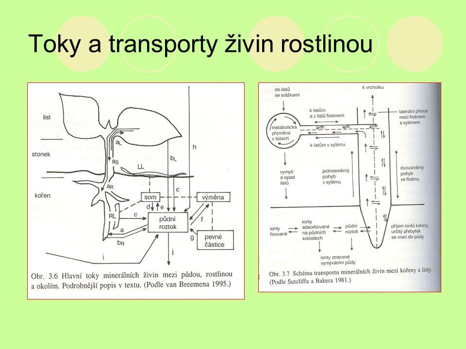 Toky a transporty živin rostlinou