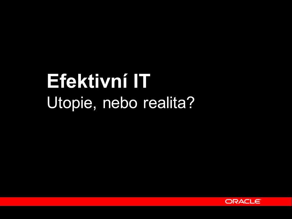Efektivní IT Utopie, nebo realita