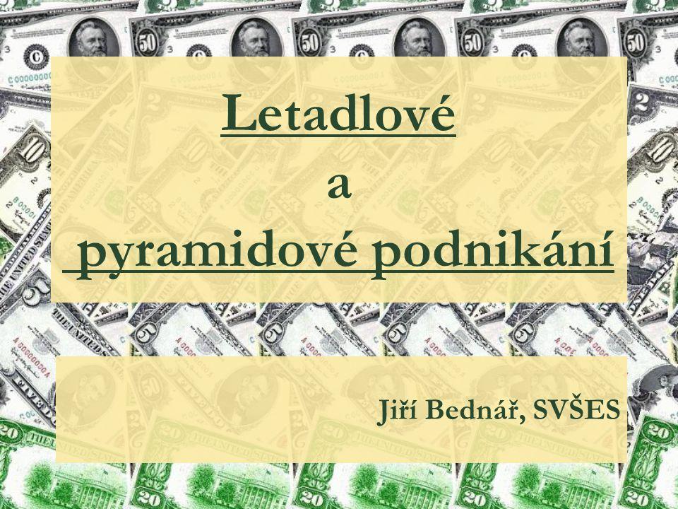 Letadlové a pyramidové podnikání Jiří Bednář, SVŠES