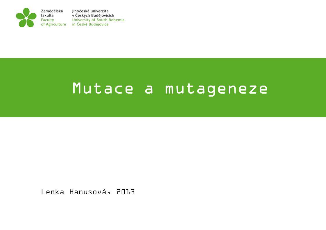 Mutace kódující sekvence A) mutace neměnící smysl (samesense, silent mutation) B) mutace měnící smysl (missense mutation) C) nesmyslné mutace (nonsense mutation)