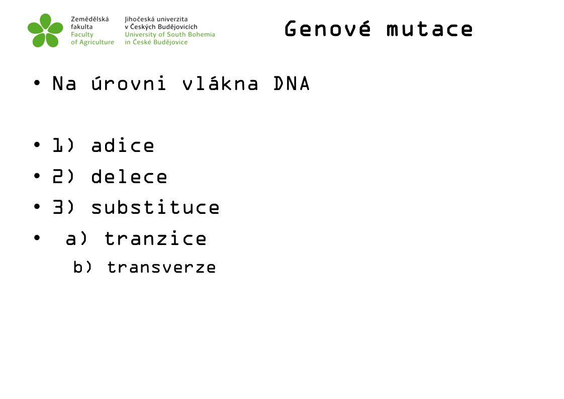 Genové mutace Na úrovni vlákna DNA 1) adice 2) delece 3) substituce a) tranzice b) transverze