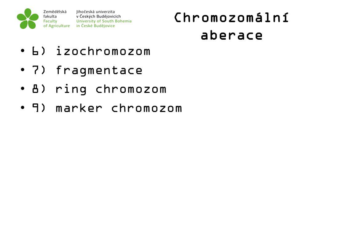 Chromozomální aberace 6) izochromozom 7) fragmentace 8) ring chromozom 9) marker chromozom
