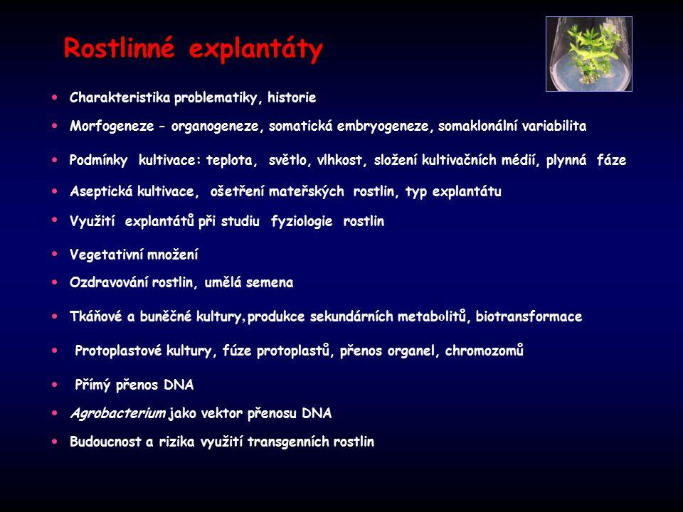Rostlinné explantáty Charakteristika problematiky, historie Morfogeneze - organogeneze, somatická embryogeneze, somaklonální variabilita Aseptická kultivace, ošetření mateřských rostlin, typ explantátu Podmínky kultivace: teplota, světlo, vlhkost, složení kultivačních médií, plynná fáze Využití explantátů při studiu fyziologie rostlin Vegetativní množení Ozdravování rostlin, umělá semena Tkáňové a buněčné kultury, produkce sekundárních metab o litů, biotransformace Protoplastové kultury, fúze protoplastů, přenos organel, chromozomů Přímý přenos DNA Agrobacterium jako vektor přenosu DNA Budoucnost a rizika využití transgenních rostlin