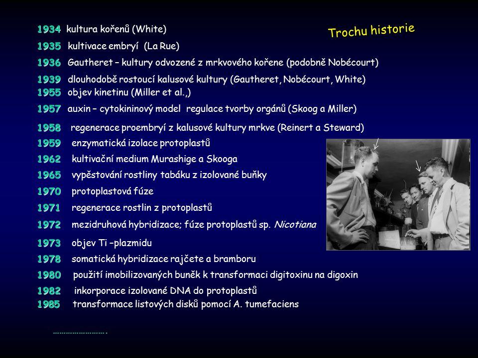 1970 1970 protoplastová fúze 1971 1971 regenerace rostlin z protoplastů 1972 1972 mezidruhová hybridizace; fúze protoplastů sp. Nicotiana 1980 1980 po