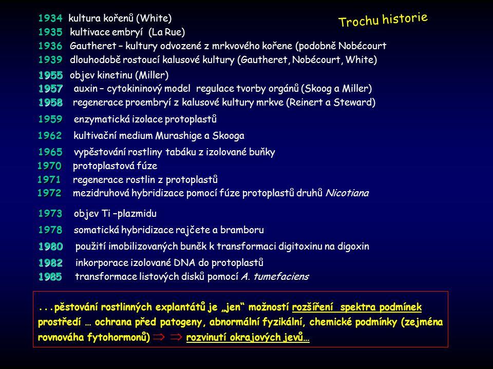 """1970 1970 protoplastová fúze 1971 1971 regenerace rostlin z protoplastů 1972 1972 mezidruhová hybridizace pomocí fúze protoplastů druhů Nicotiana 1980 1980 použití imobilizovaných buněk k transformaci digitoxinu na digoxin … pěstování rostlinných explantátů je """"jen možností rozšíření spektra podmínek prostředí … ochrana před patogeny, abnormální fyzikální, chemické podmínky (zejména rovnováha fytohormonů)   rozvinutí okrajových jevů… 1934 1934 kultura kořenů (White) 1935 1935 kultivace embryí (La Rue) 1936 1936 Gautheret – kultury odvozené z mrkvového kořene (podobně Nobécourt 1939 1939 dlouhodobě rostoucí kalusové kultury (Gautheret, Nobécourt, White) Trochu historie 1955 1955 objev kinetinu (Miller) 1957 1957 auxin – cytokininový model regulace tvorby orgánů (Skoog a Miller) 1958 1958 regenerace proembryí z kalusové kultury mrkve (Reinert a Steward) 1959 1959 enzymatická izolace protoplastů 1962 1962 kultivační medium Murashige a Skooga 1965 1965 vypěstování rostliny tabáku z izolované buňky 1973 1973 objev Ti –plazmidu 1978 1978 somatická hybridizace rajčete a bramboru 1982 1982 inkorporace izolované DNA do protoplastů 1985 1985 transformace listových disků pomocí A."""