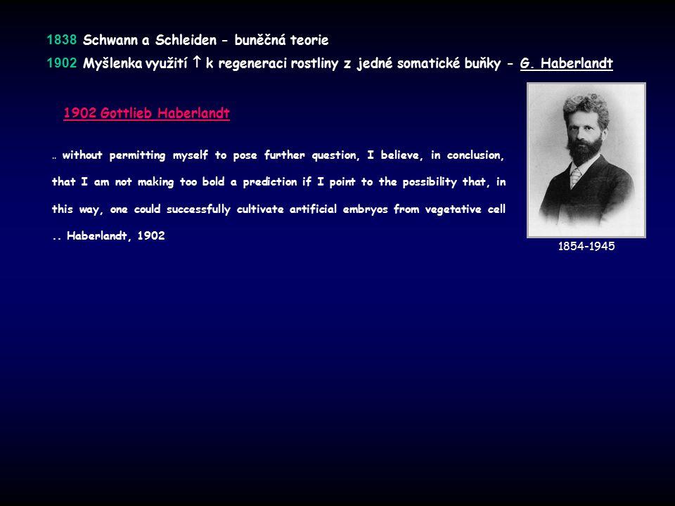 1838 1838 Schwann a Schleiden - buněčná teorie 1902 1902 Myšlenka využití  k regeneraci rostliny z jedné somatické buňky - G.