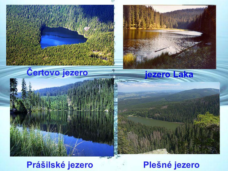 Čertovo jezero jezero Laka Plešné jezeroPrášilské jezero