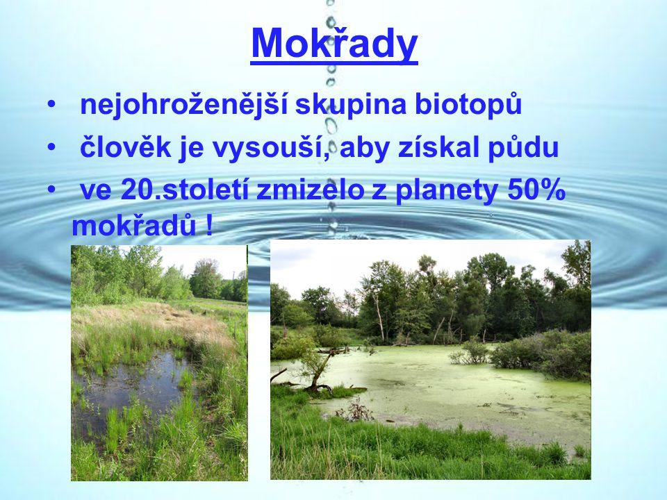 Mokřady nejohroženější skupina biotopů člověk je vysouší, aby získal půdu ve 20.století zmizelo z planety 50% mokřadů !