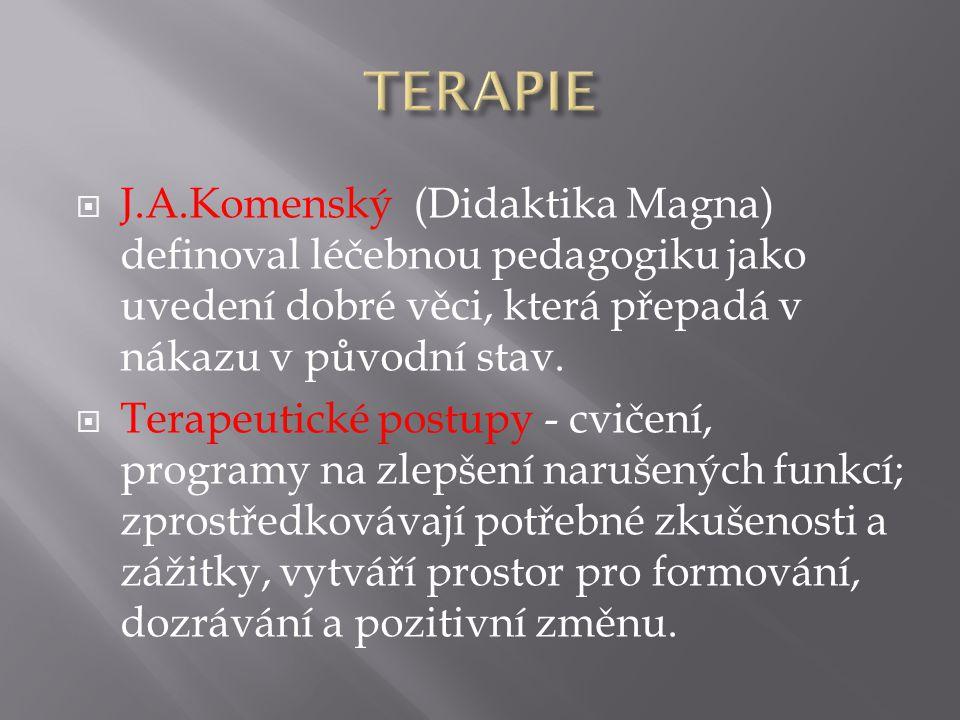  J.A.Komenský (Didaktika Magna) definoval léčebnou pedagogiku jako uvedení dobré věci, která přepadá v nákazu v původní stav.  Terapeutické postupy
