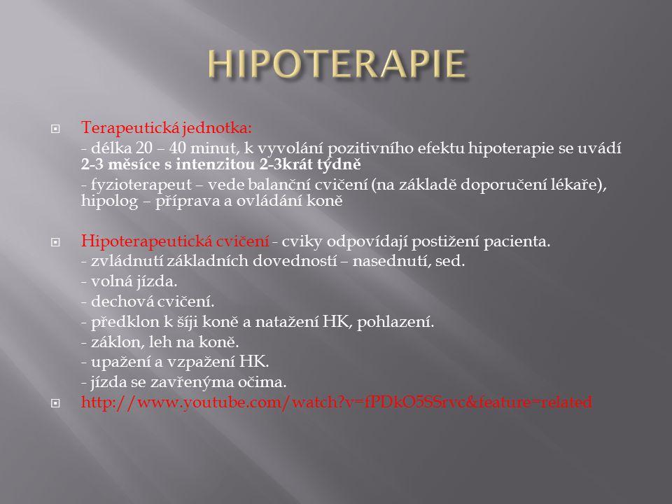  Terapeutická jednotka: - délka 20 – 40 minut, k vyvolání pozitivního efektu hipoterapie se uvádí 2-3 měsíce s intenzitou 2-3krát týdně - fyzioterape