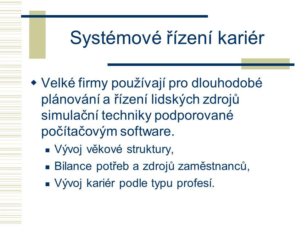 Systémové řízení kariér  Velké firmy používají pro dlouhodobé plánování a řízení lidských zdrojů simulační techniky podporované počítačovým software.