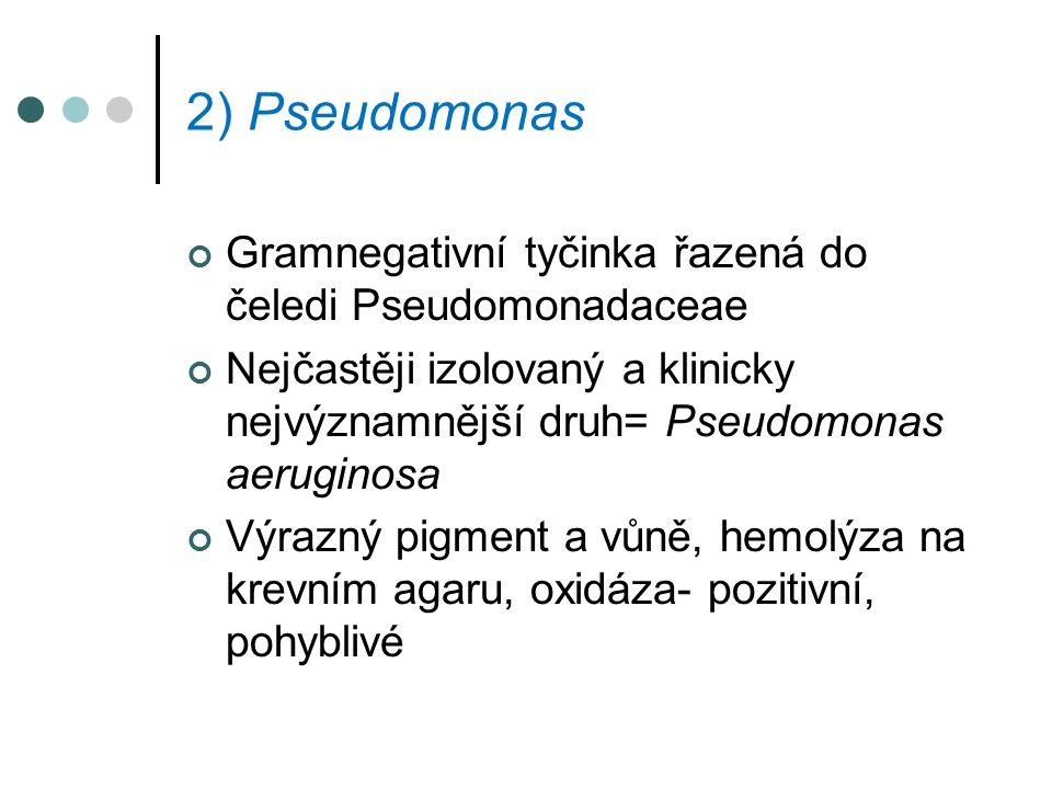 2) Pseudomonas Gramnegativní tyčinka řazená do čeledi Pseudomonadaceae Nejčastěji izolovaný a klinicky nejvýznamnější druh= Pseudomonas aeruginosa Výr