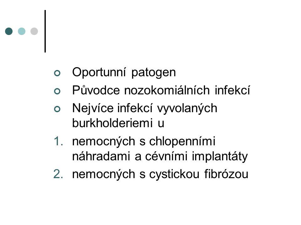 Oportunní patogen Původce nozokomiálních infekcí Nejvíce infekcí vyvolaných burkholderiemi u 1.nemocných s chlopenními náhradami a cévními implantáty