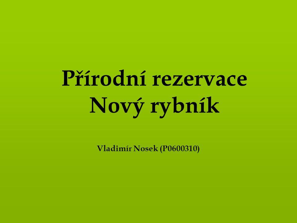 Přírodní rezervace Nový rybník Vladimír Nosek (P0600310)