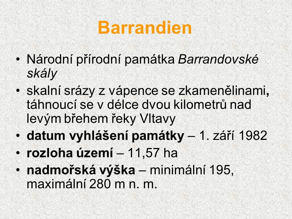 Barrandien Národní přírodní památka Barrandovské skály skalní srázy z vápence se zkamenělinami, táhnoucí se v délce dvou kilometrů nad levým břehem ře