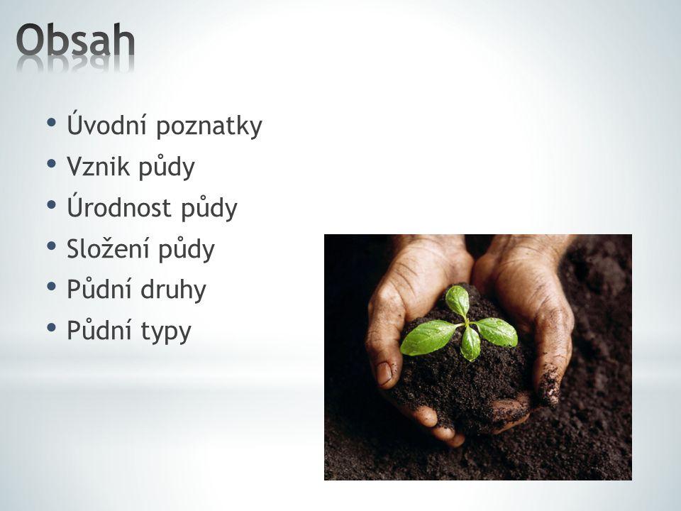 Úvodní poznatky Vznik půdy Úrodnost půdy Složení půdy Půdní druhy Půdní typy