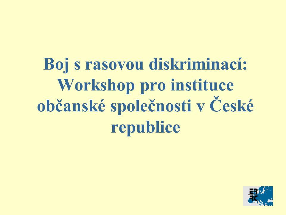 Boj s rasovou diskriminací: Workshop pro instituce občanské společnosti v České republice