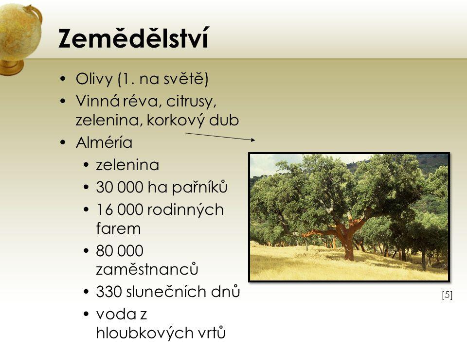 Zemědělství Olivy (1. na světě) Vinná réva, citrusy, zelenina, korkový dub Alméría zelenina 30 000 ha pařníků 16 000 rodinných farem 80 000 zaměstnanc