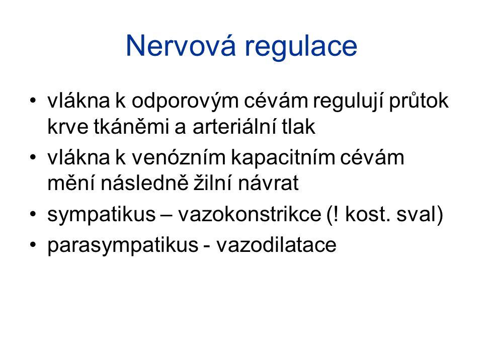 Nervová regulace vlákna k odporovým cévám regulují průtok krve tkáněmi a arteriální tlak vlákna k venózním kapacitním cévám mění následně žilní návrat