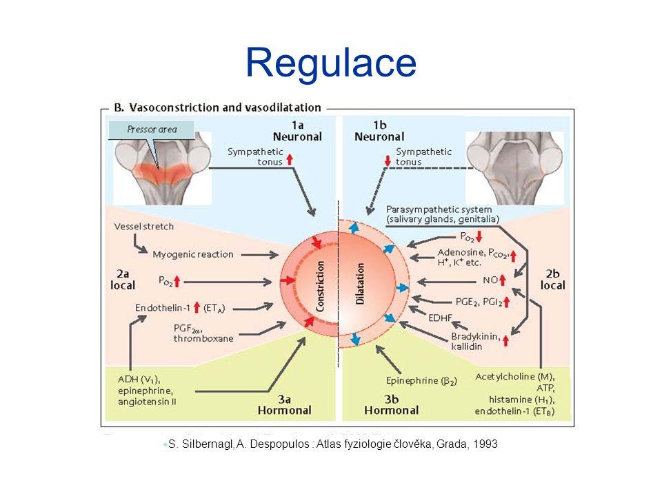 Regulace S. Silbernagl, A. Despopulos : Atlas fyziologie člověka, Grada, 1993