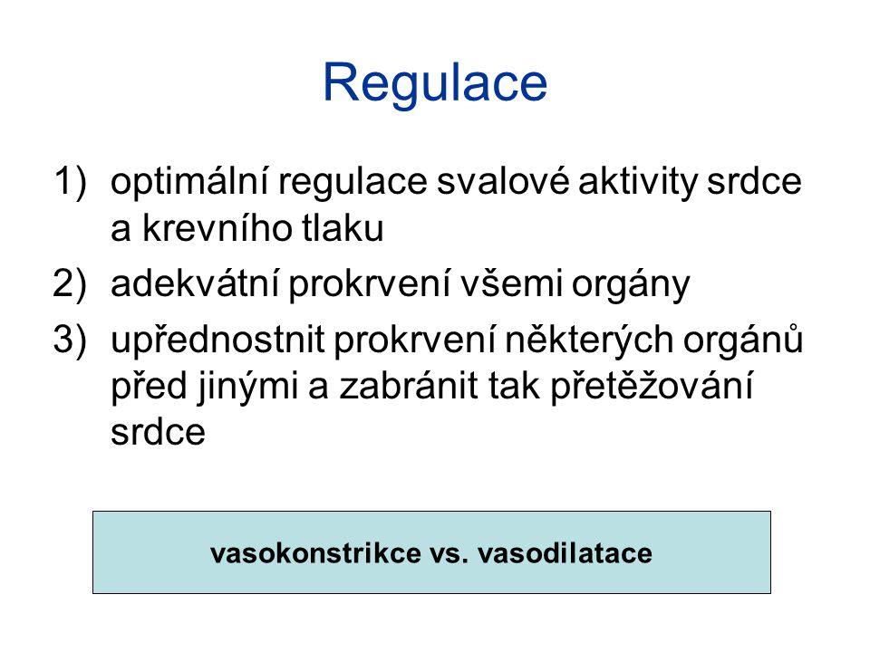 Kosterní svaly sympatikus (adrenergní) noradrenalin, alfa receptory → vazokonstrikce beta receptory – stimulace cirkulujícími katecholaminy → vazodilatace sympatikus (cholinergní) acetylcholin, vazodilatace ovlivňován emočními stimuly lokální metabolické faktory ↑CO2 a kys.