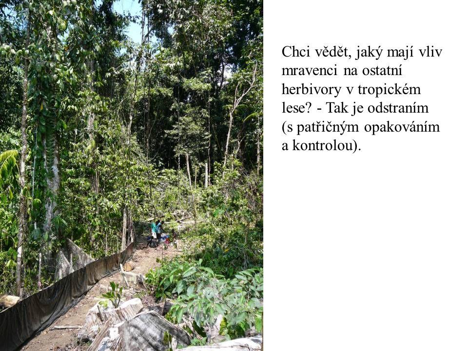 Chci vědět, jaký mají vliv mravenci na ostatní herbivory v tropickém lese? - Tak je odstraním (s patřičným opakováním a kontrolou).
