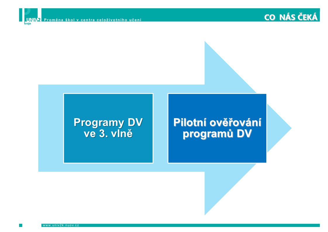 CO NÁS ČEKÁ Programy DV ve 3. vlně Pilotní ověřování programů DV