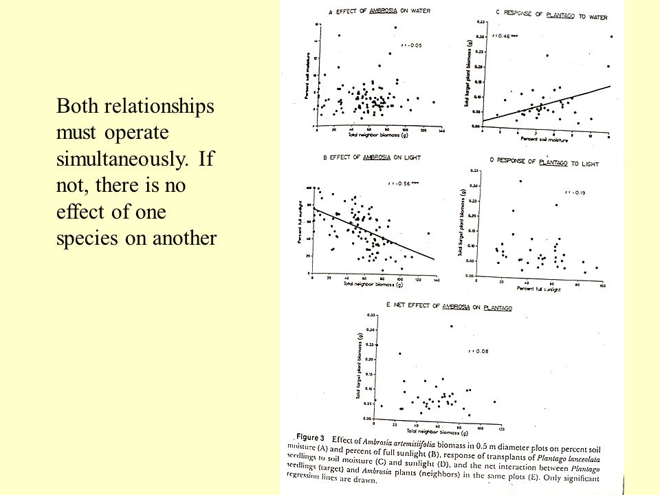 Both relationships must operate simultaneously. If not, there is no effect of one species on another