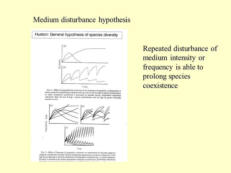 Medium disturbance hypothesis Repeated disturbance of medium intensity or frequency is able to prolong species coexistence