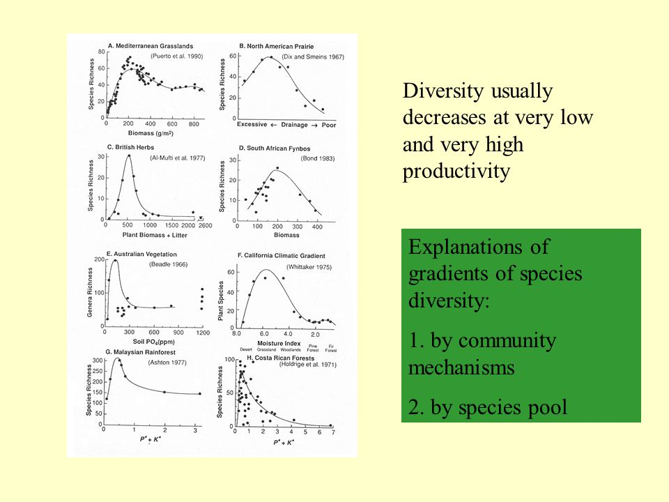 Diversity usually decreases at very low and very high productivity Explanations of gradients of species diversity: 1. by community mechanisms 2. by sp