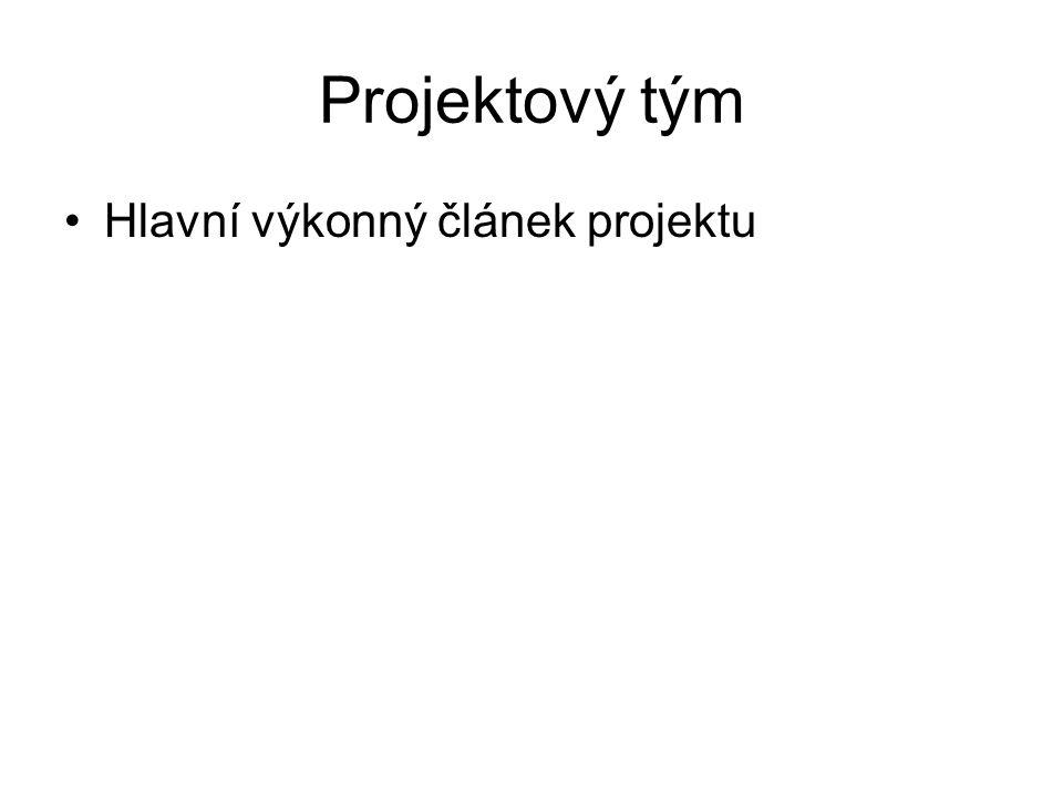 Projektový tým Hlavní výkonný článek projektu