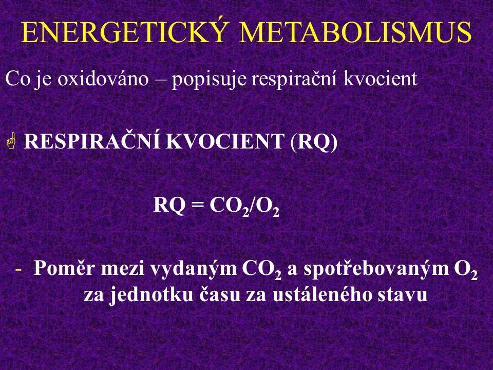 Lidský organismus má k dispozici relativně velké množství energie: Zásobní cukr - glykogen (muž o hmotnosti 70 kg má asi 500 g glykogenu, z toho 400 g