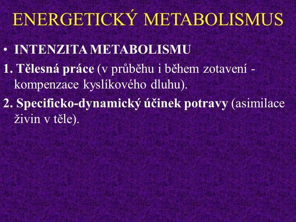 ENERGETICKÝ METABOLISMUS Při hyperventilaci RQ stoupá (vydechován více CO 2 ). Při intenzivní zátěži RQ až 1,3-2,00 (vydechován více CO 2 a kyselina m