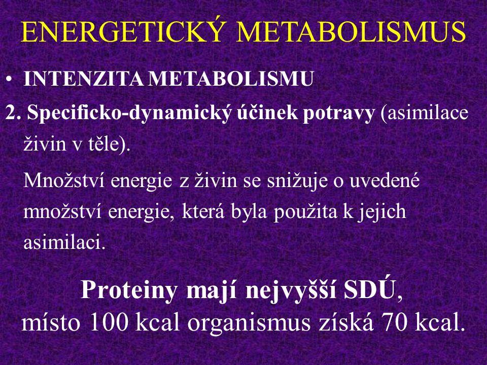 ENERGETICKÝ METABOLISMUS INTENZITA METABOLISMU 2. Specificko-dynamický účinek potravy (asimilace živin v těle) - trvá několik hodin. A) Množství prote