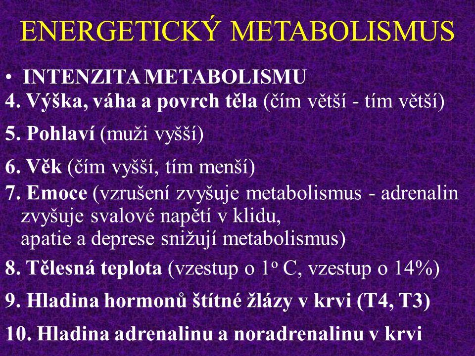 Teplota okolí Intenzita metabolismu Teplota tělesného jádra