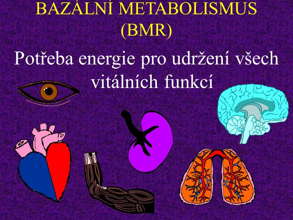 ENERGETICKÝ METABOLISMUS INTENZITA METABOLISMU 4. Výška, váha a povrch těla (čím větší - tím větší) 5. Pohlaví(muži vyšší) 6. Věk (čím vyšší, tím menš