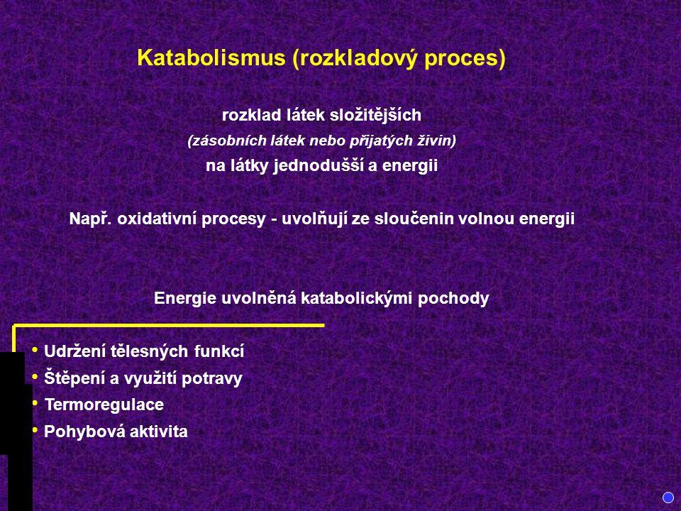 Katabolismus (rozkladový proces) rozklad látek složitějších (zásobních látek nebo přijatých živin) na látky jednodušší a energii Např.