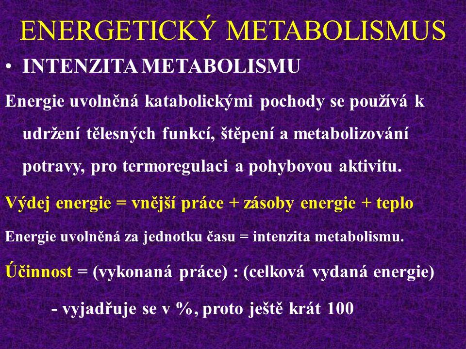ENERGETICKÝ METABOLISMUS INTENZITA METABOLISMU Energie uvolněná katabolickými pochody se používá k udržení tělesných funkcí, štěpení a metabolizování potravy, pro termoregulaci a pohybovou aktivitu.