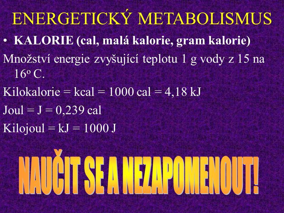 ENERGETICKÝ METABOLISMUS INTENZITA METABOLISMU Izotonická svalová kontrakce: maximální účinnost asi 50%. Izometrická svalová kontrakce: všechna energi