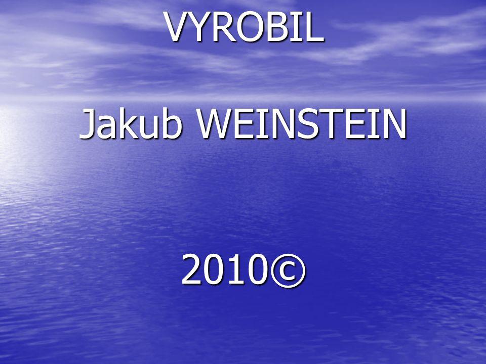 VYROBIL Jakub WEINSTEIN 2010© KONECKONEC