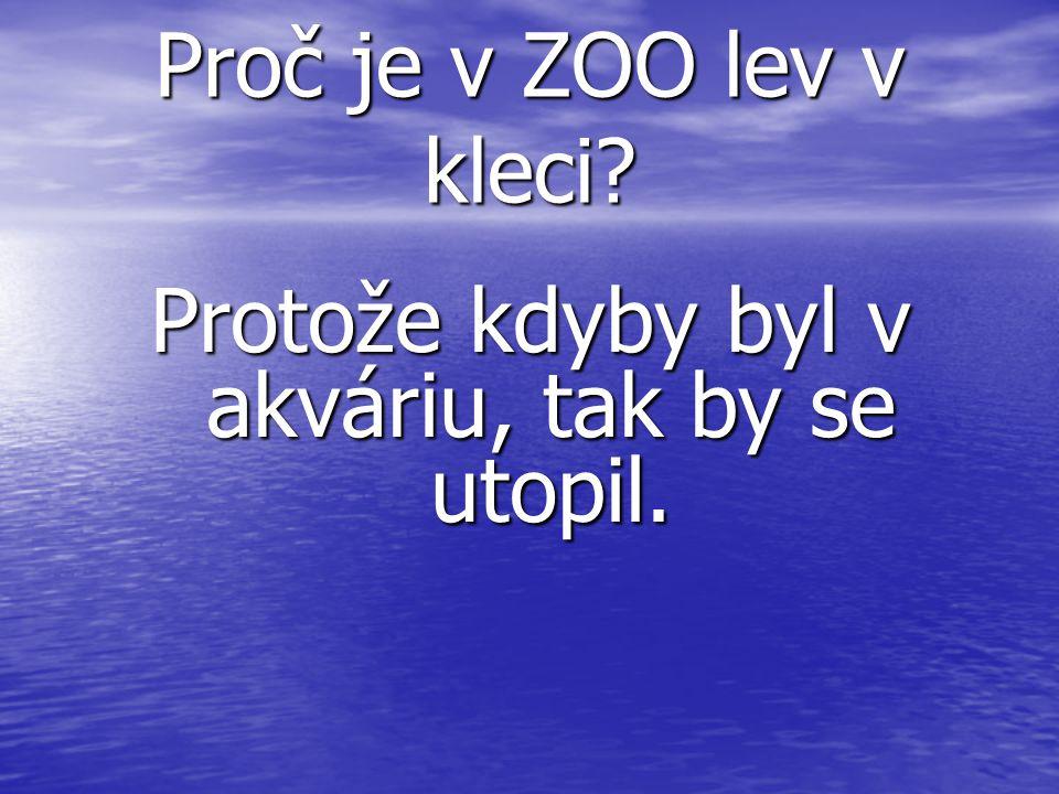 Proč je v ZOO lev v kleci Protože kdyby byl v akváriu, tak by se utopil.