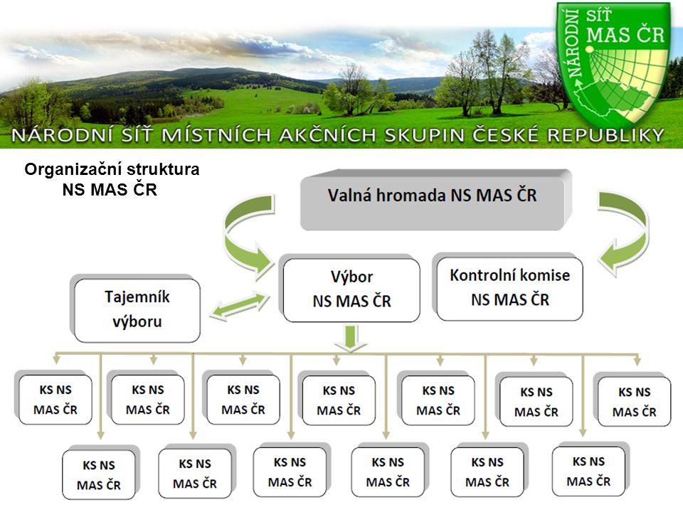 Organizační struktura NS MAS ČR