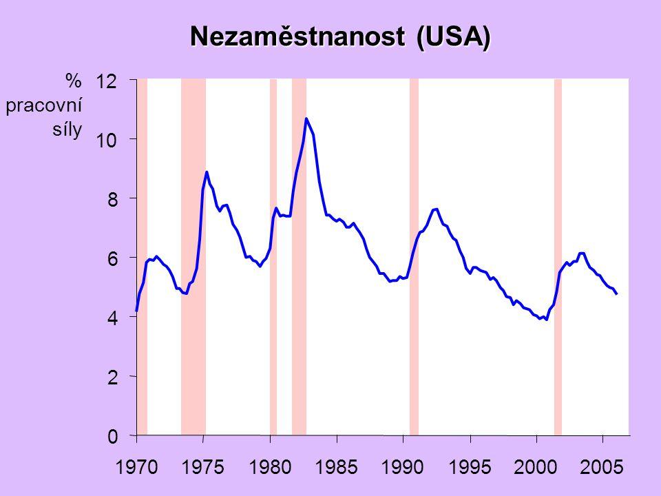 Nezaměstnanost (USA) 0 2 4 6 8 10 12 19701975198019851990199520002005 % pracovní síly