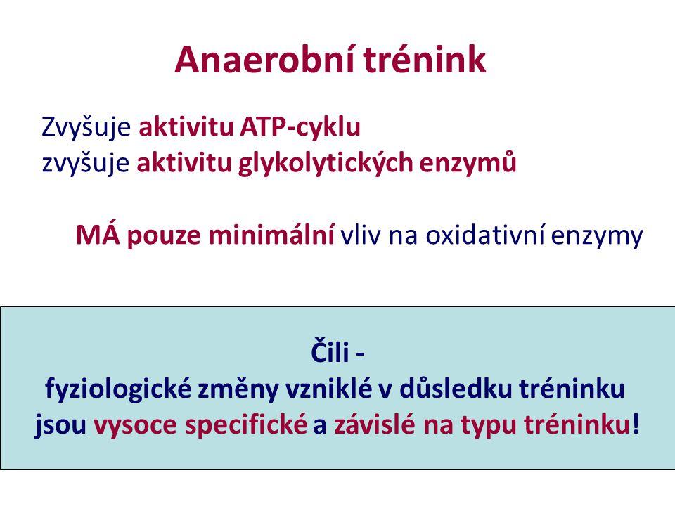Anaerobní trénink Zvyšuje aktivitu ATP-cyklu zvyšuje aktivitu glykolytických enzymů MÁ pouze minimální vliv na oxidativní enzymy Čili - fyziologické z