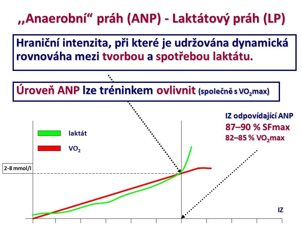 Hraniční intenzita, při které je udržována dynamická rovnováha mezi tvorbou a spotřebou laktátu. IZ laktát VO 2 2-8 mmol/l IZ odpovídající ANP 87–90 %