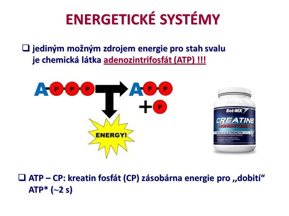 ENERGETICKÉ SYSTÉMY  jediným možným zdrojem energie pro stah svalu je chemická látka adenozintrifosfát (ATP) !!! je chemická látka adenozintrifosfát
