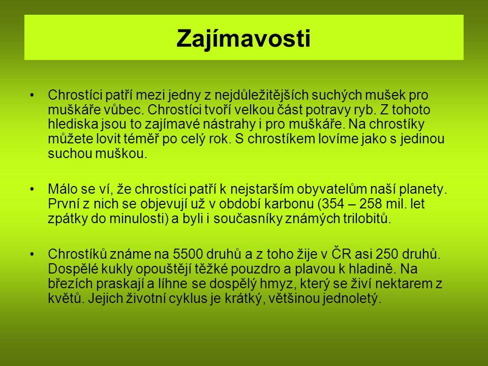 Zdroj http://www.biolib.cz/cz/taxonimage/id12177/?taxonid=16867&type=1 http://www.google.cz/imgres?imgurl=http://nd01.jxs.cz/854/170/42f193f86d_42917695_o2.gif&imgrefurl=http://pup ek73.blog.cz/0903/zatavovani-mezisten&usg=__IE6_if-YV84uNKfHCOb- GxVqHvA=&h=112&w=77&sz=12&hl=cs&start=92&zoom=1&tbnid=TuQKBnmxU75v7M:&tbnh=95&tbnw=65&ei=u Mm-TcvvBcySOojo-esF&prev=/search%3Fq%3Dchrost%25C3%25ADci%26hl%3Dcs%26client%3Dfirefox- a%26sa%3DX%26rls%3Dorg.mozilla:cs:official%26biw%3D1280%26bih%3D643%26tbm%3Disch0%2C3181&itbs =1&iact=hc&vpx=342&vpy=400&dur=200&hovh=95&hovw=65&tx=69&ty=57&page=7&ndsp=18&3181&itbs =1&iact=hc&vpx=342&vpy=400&dur=200&hovh=95&hovw=65&tx=69&ty=57&page=7&ndsp=18& http://www.biolib.cz/cz/image/id112080/ http://www.biolib.cz/cz/image/id112078/ http://translate.google.cz/translate?hl=cs&langpair=en cs&u=http://www.physorg.com/news186641968.html http://translate.google.cz/translate?hl=cs&langpair=en cs&u=http://animaldiversity.ummz.umich.edu/site/accounts/ pictures/Trichoptera.htmlhttp://translate.google.cz/translate?hl=cs&langpair=en cs&u=http://animaldiversity.ummz.umich.edu/site/accounts/ pictures/Trichoptera.html http://translate.google.cz/translate?hl=cs&langpair=en cs&u=http://animaldiversity.ummz.umich.edu/site/accounts/ pictures/Trichoptera.htmlhttp://translate.google.cz/translate?hl=cs&langpair=en cs&u=http://animaldiversity.ummz.umich.edu/site/accounts/ pictures/Trichoptera.html http://fotoblog.in/index.php?s=larva http://www.google.cz/imgres?imgurl=http://www.gymta.cz/kabinety/kab_biologie/videoatlas/hmyz/do/160-chrostik- velky.jpg&imgrefurl=http://www.gymta.cz/kabinety/kab_biologie/videoatlas/hmyz/chrostici.html&usg=__C1tmdRKIq Qk- FMfxMokuj15wI_I=&h=215&w=400&sz=14&hl=cs&start=0&zoom=1&tbnid=cMeaUwj8_yccTM:&tbnh=164&tbnw=3 06&ei=d92- Tcb7CMWEOvfZ0M8G&prev=/search%3Fq%3Dchrost%25C3%25ADk%2Bvelk%25C3%25BD%2Bfoto%26hl%3 Dcs%26client%3Dfirefox- a%26hs%3D7Jc%26sa%3DX%26rls%3Dorg.mozilla:cs:official%26biw%3D1280%26bih%3D643%26tbm%3Disch %26prmd%3Div
