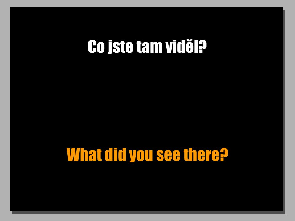 Co jste tam viděl What did you see there