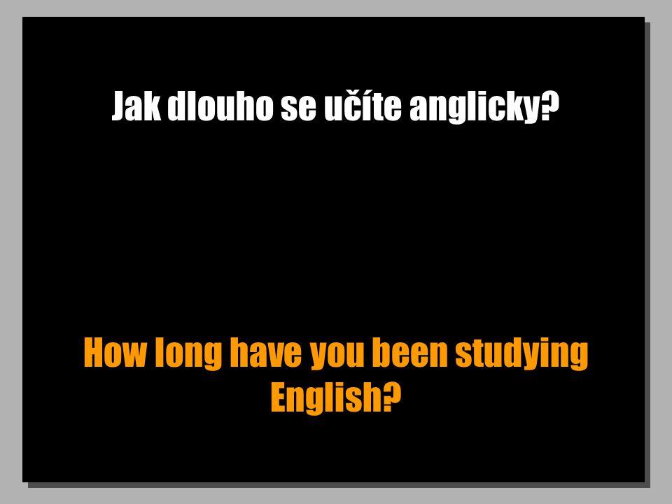 Jak dlouho se učíte anglicky How long have you been studying English